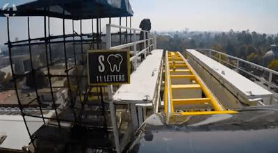 rollercoaster de mol