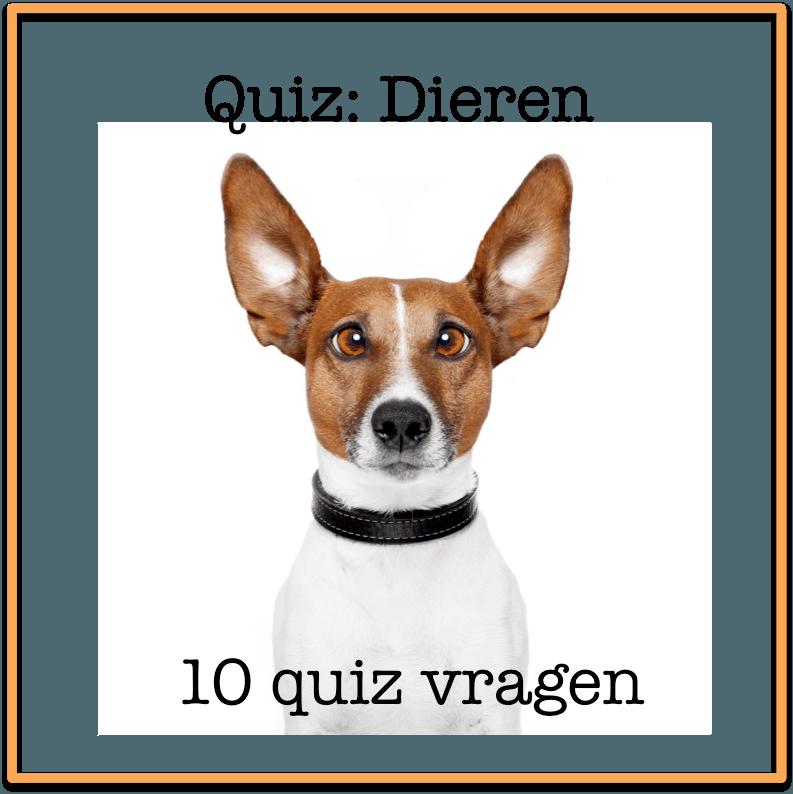quiz vragen dieren